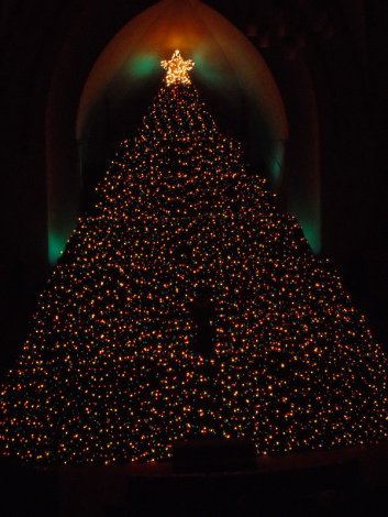 The Living Christmas Tree at St. Andrew's