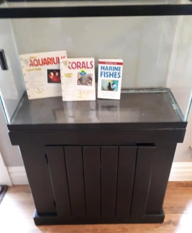 Saltwater tank and accessories