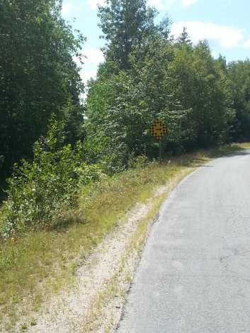 Wooded lot in Digby Co. Nova Scotia