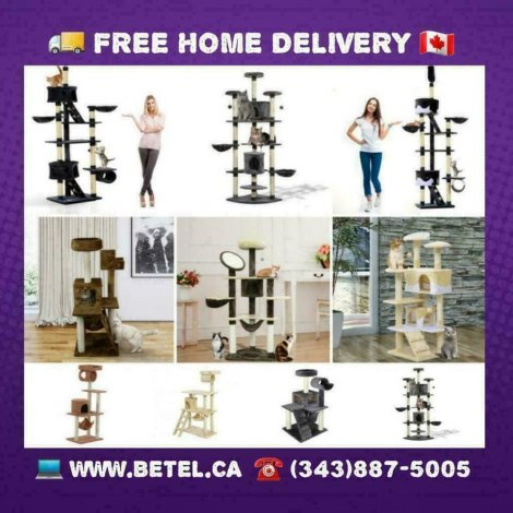 Best Cat Trees Condo Scratching Posts & Activity Centre Collection From $49