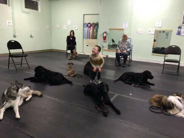 Well-Behaved Dog Class