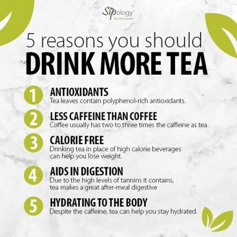 In Search of Tea Lovers!